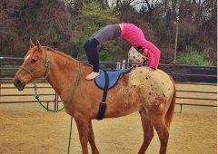 美女子(zi)馬背上做瑜伽 和諧相處令人羨